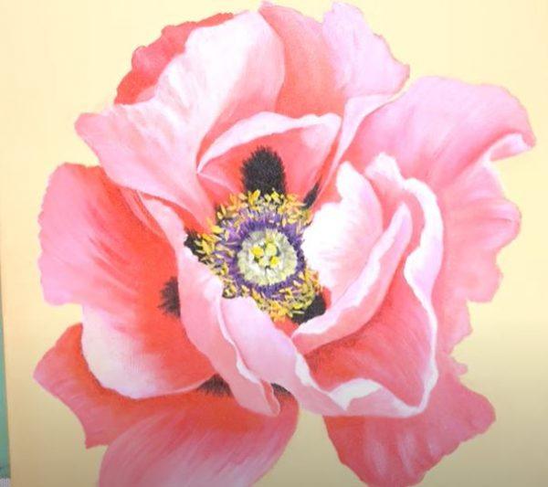 Unmasteredclass Oriental Poppy