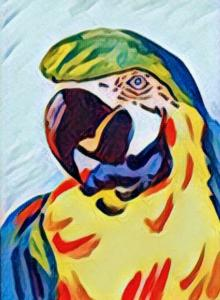 Paco the Parrot