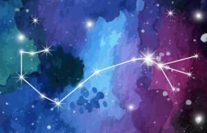 Star Sign © Studio Vino