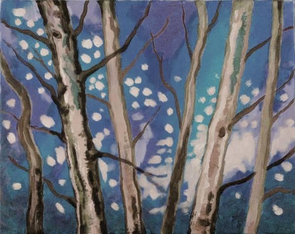 Winter Forest © Studio Vino